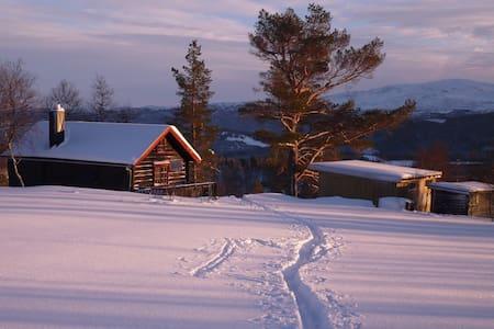 Hytte på fjellet - Meldal - Chalet