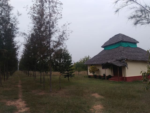 Sandalwood Forest Retreat   (only for families)