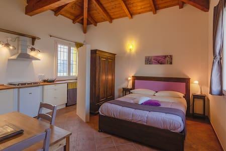 Mini appartamento - Agr. Primaluna  - Castenaso - Apartmen