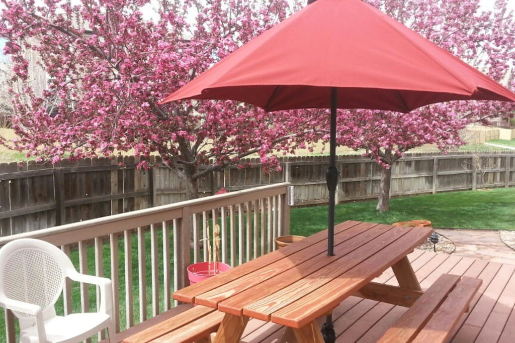 Deck with Picnic Table