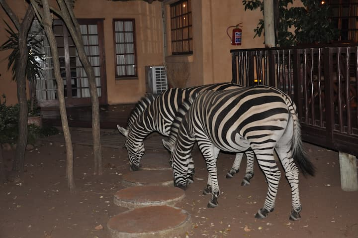 Needles Lodge - Safari Kruger Park