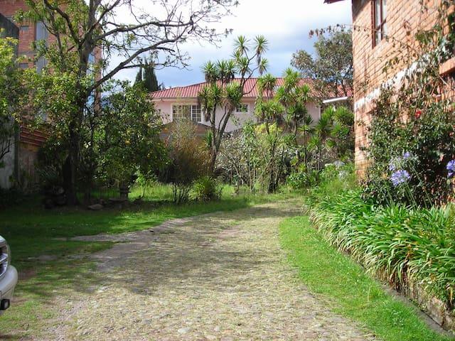 Green Spot Cuenca Ecuador