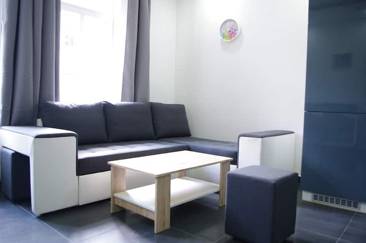 Cozy 1BDR and 1 living room apartment (2-4pax)