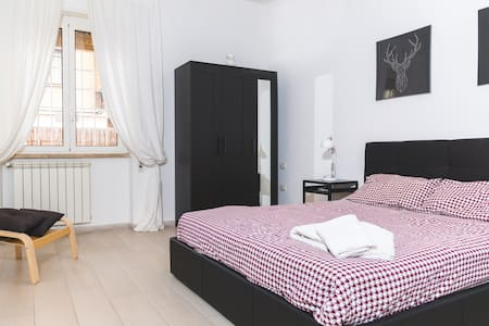 LARGE room in renovated apt on the Beach near Rome