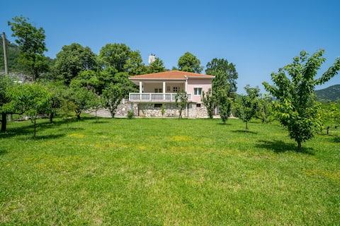 House Gorica, Godinje