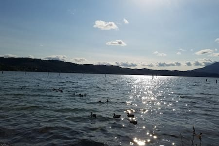 Private Room, own Bathroom, near beautiful lakes - Clearlake - 公寓