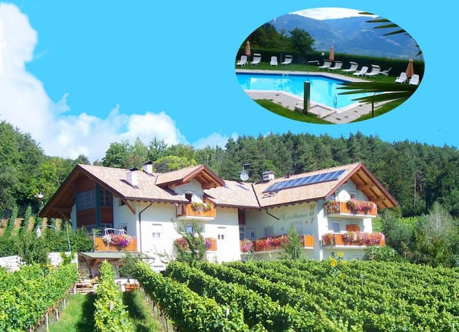Kerschbamerhof FeWo mit Pool im Süden von Südtirol