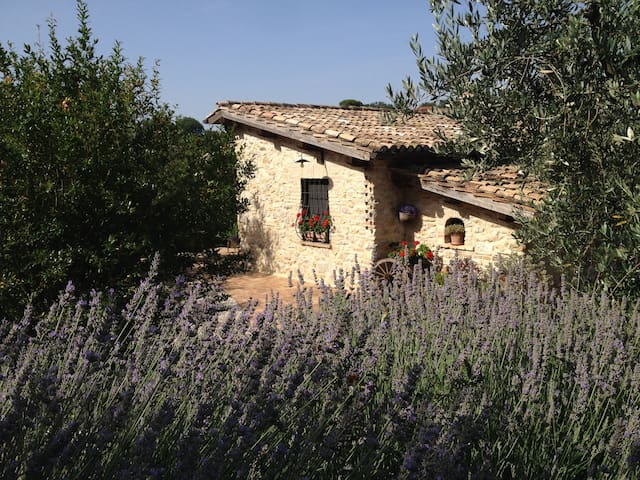 CASALETTO COUNTRY HOUSE - Poggio Mirteto - Huis