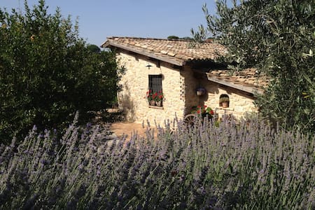 CASALETTO COUNTRY HOUSE - Poggio Mirteto - Casa