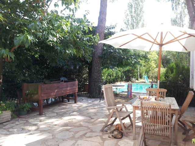Spacious & bright room with garden - Carpentras - Dom