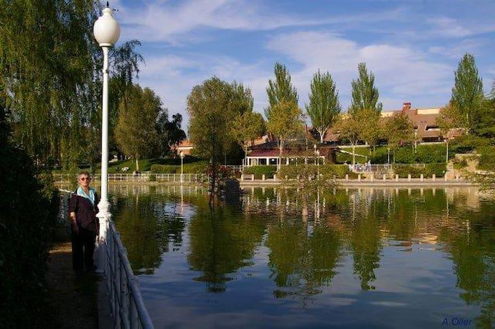 Bonito ático en la Sierra de Madrid - Collado Villalba - House