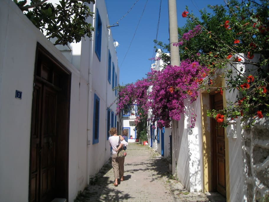 The house is located in a pretty old Bodrum cul de sac