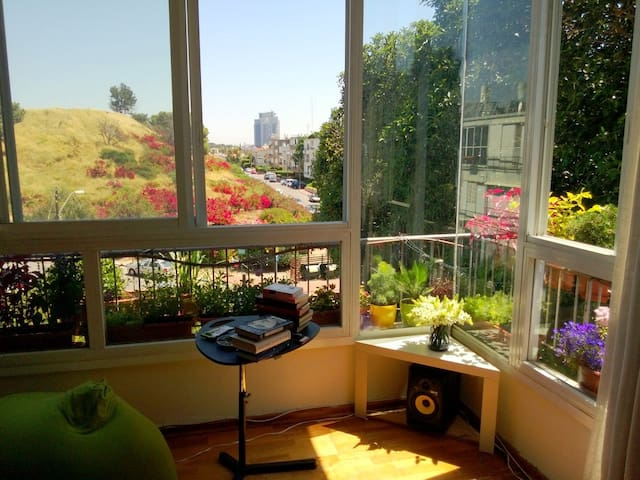 Sunny apartment over park