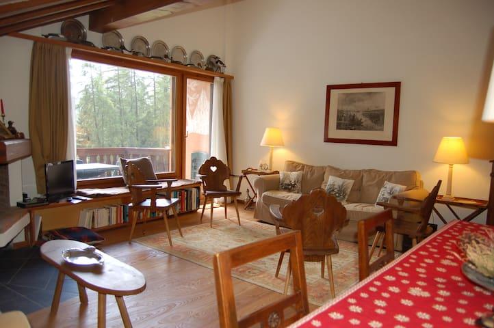 Charming flat with view - Pontresina - Apartment
