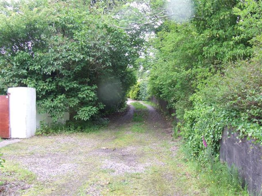 Laneway