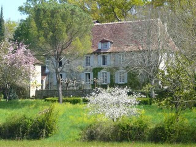 Grande et  belle maison de famille. - Salies-de-Béarn - House