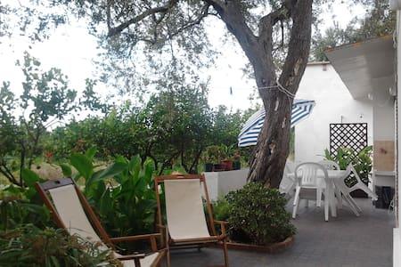Casa Vacanze Mare Capo D'Orlando - Brolo