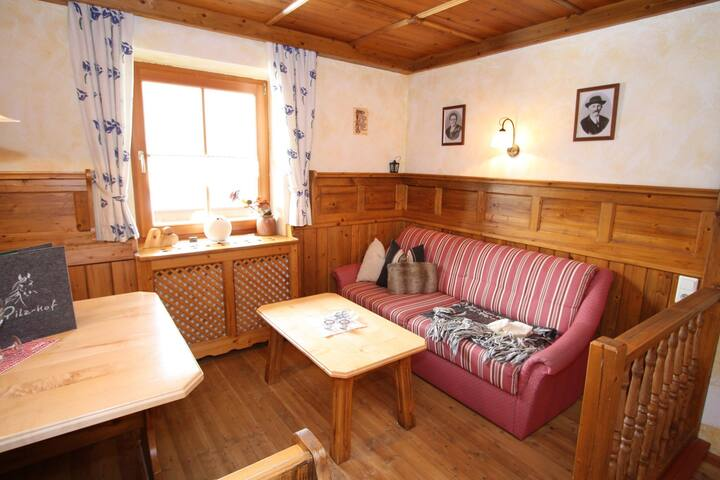 Hilltop Apartment in Filzmoos with Sauna