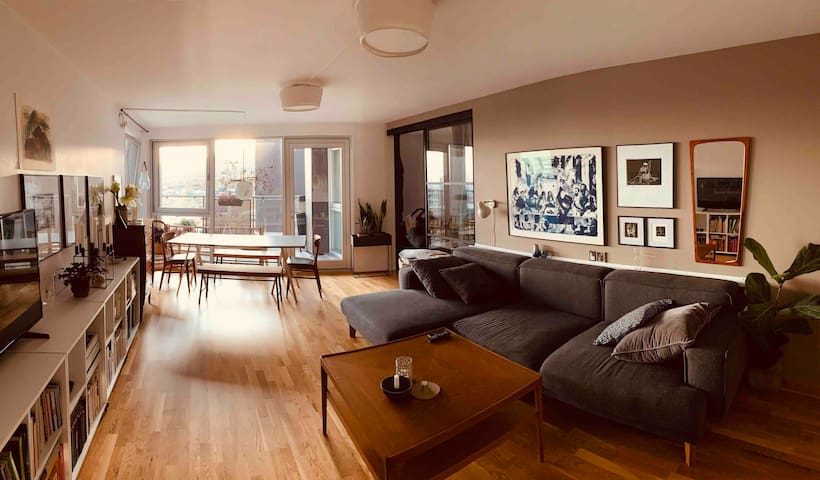Large new flat with great view, in captital