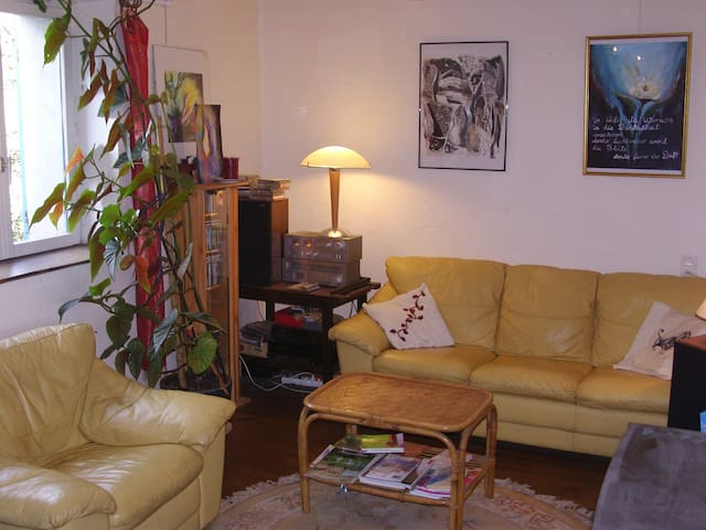 charmant appartement plein pied - Laslades - 獨棟