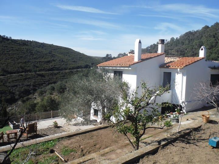 Casa Rural Sa Vinya
