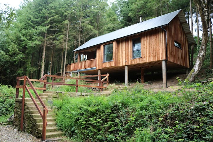 Cabin in the woods - Enniscorthy - Hus