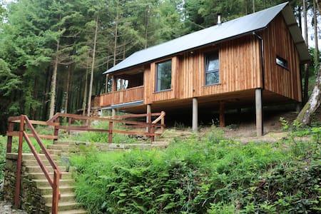 Cabin in the woods - Enniscorthy - Ev