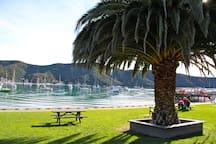 Waikawa Bay -Picnic,Swim or fish (3 min drive away)