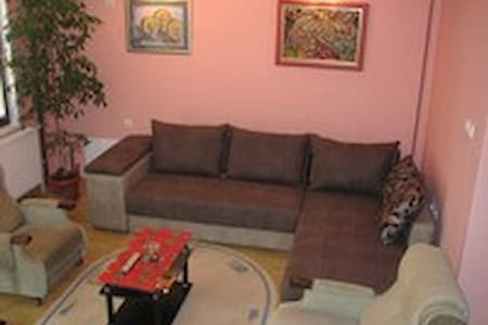 Studio and Rooms Trajkovic