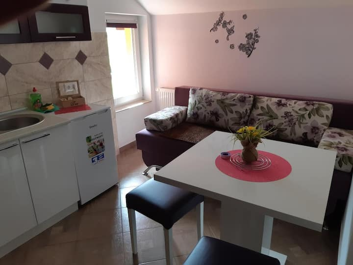One bedroom apartment with balcony Vranovača, Plitvice (A-17461-a)