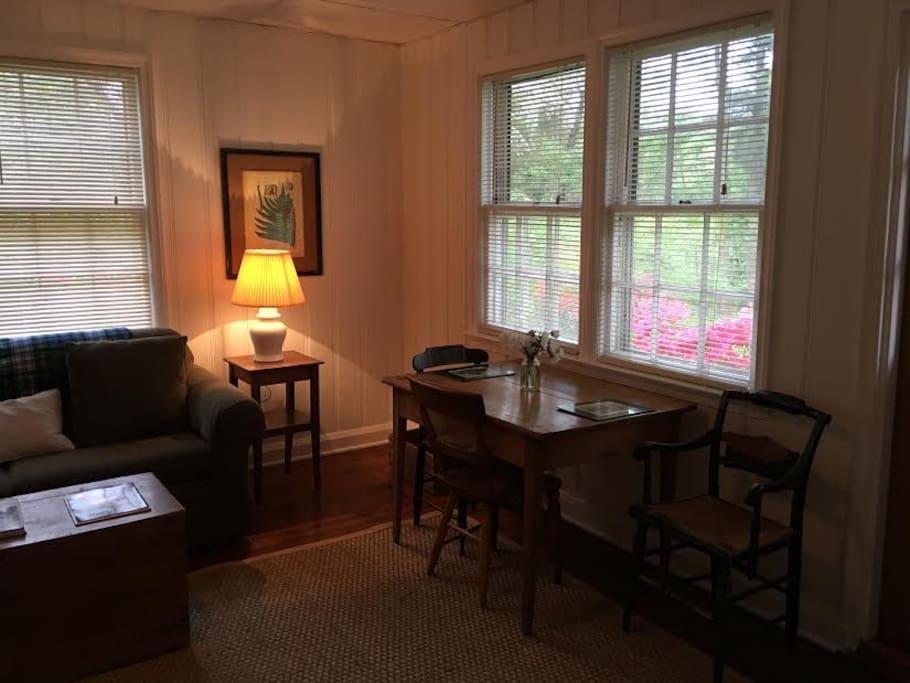 Livingroom, eating area