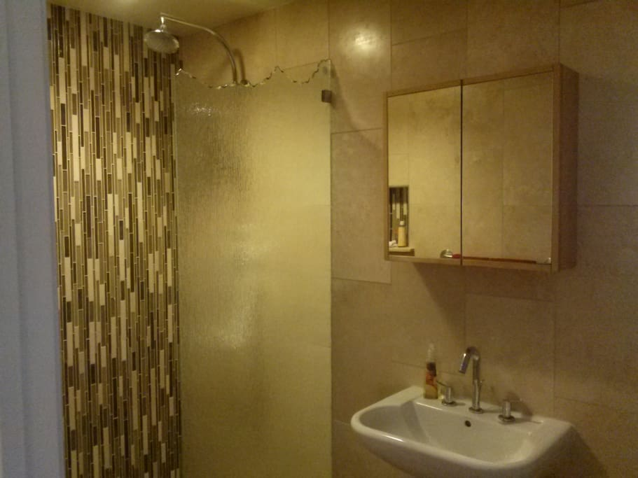 Brand new Vegas style shower and bathroom!