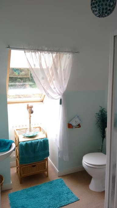 Your own private shower room. Shared bathroom downstairs can also be used if necessary