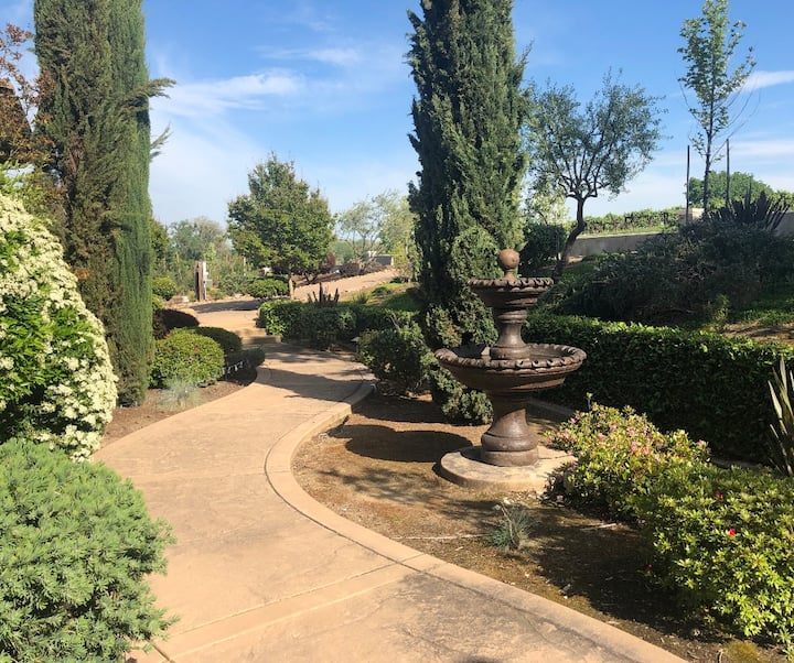 Luxury Vineyards estate home breathtaking views!
