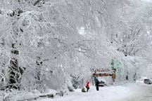 Zima na Równicy