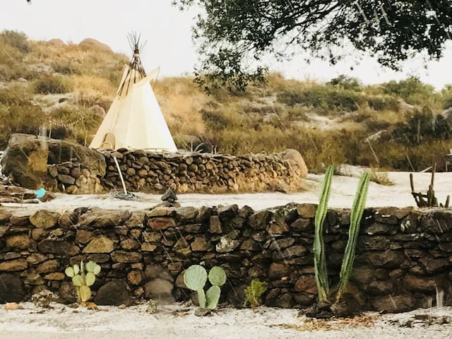 Tipi for 1 on 170 acre ranch