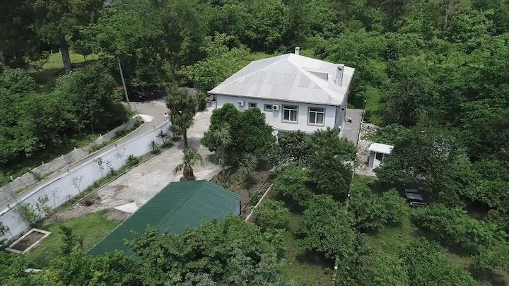 Maguli's house