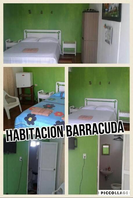 Habitacion doble, baño pivado, nevera, aire acondicionado y televisor