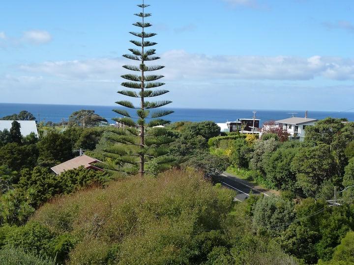 Bush sanctuary with sea views