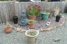 Pretty front area with pots