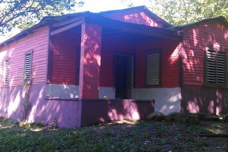 Lovely Cabin in the Woods - Joba Arriba