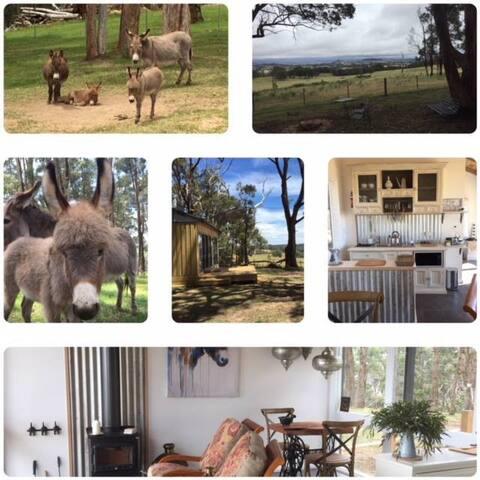 Hee Haw Hut - Solitude...Donkeys...Wildlife.