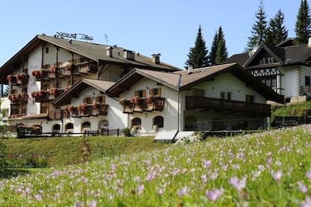 Alpine Touring Hotel sulle Dolomiti - Pozza di Fassa - ที่พักพร้อมอาหารเช้า