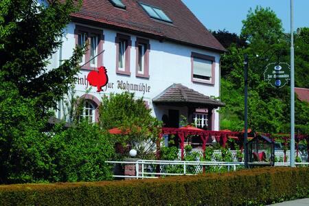 Ferienwohnungen in der 'Hahnmühle'  - Bensheim