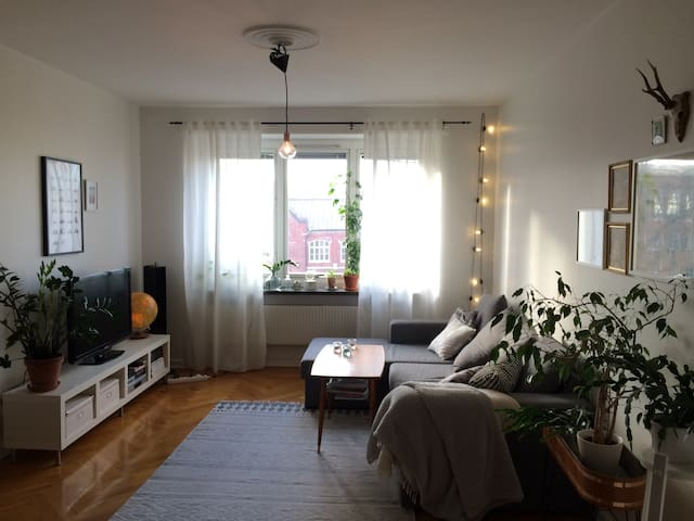 Cozy apartment in hip area