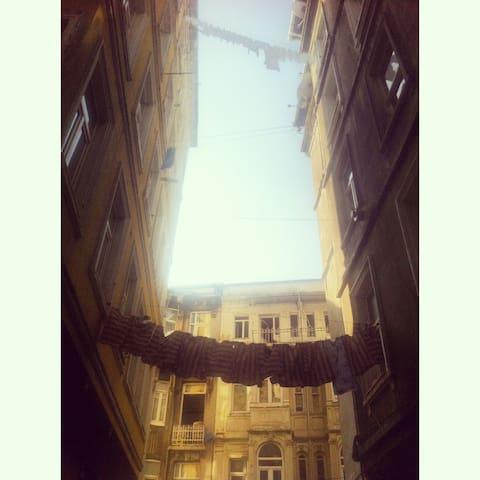The street.