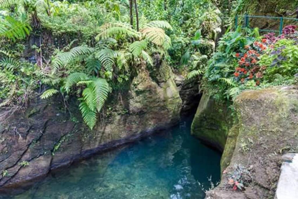 Titou Gorge adventures