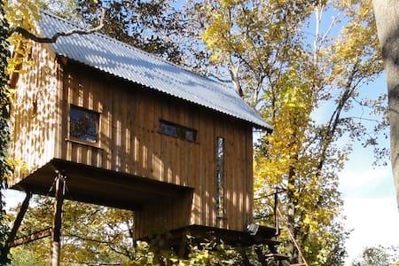 Chambre perchée dans un arbre - Treehouse