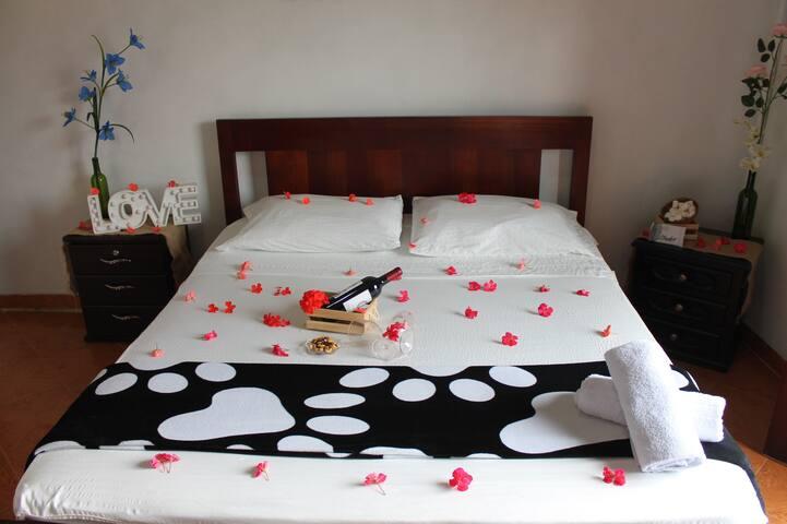 Hotel Europa EcoTours experiencias mágicas