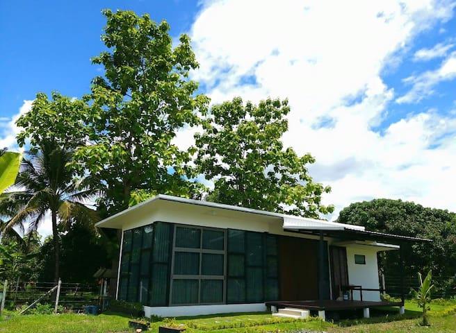 Modern Garden home